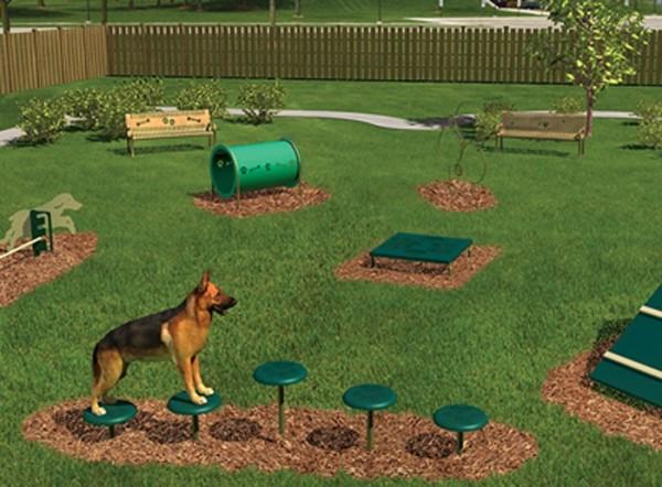 Размер стека для дрессировки собак
